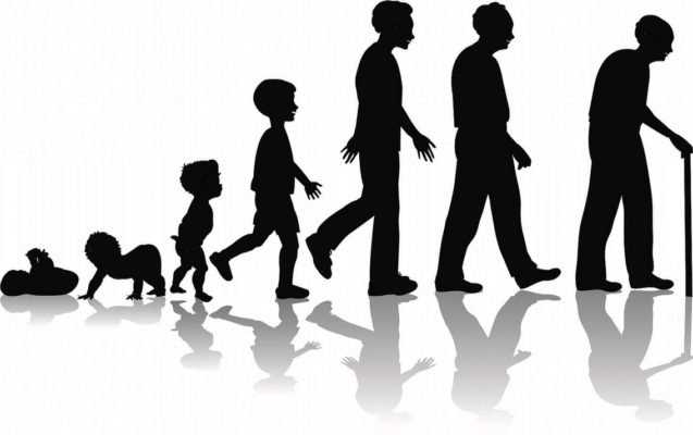 Диагностика  биологического  возраста